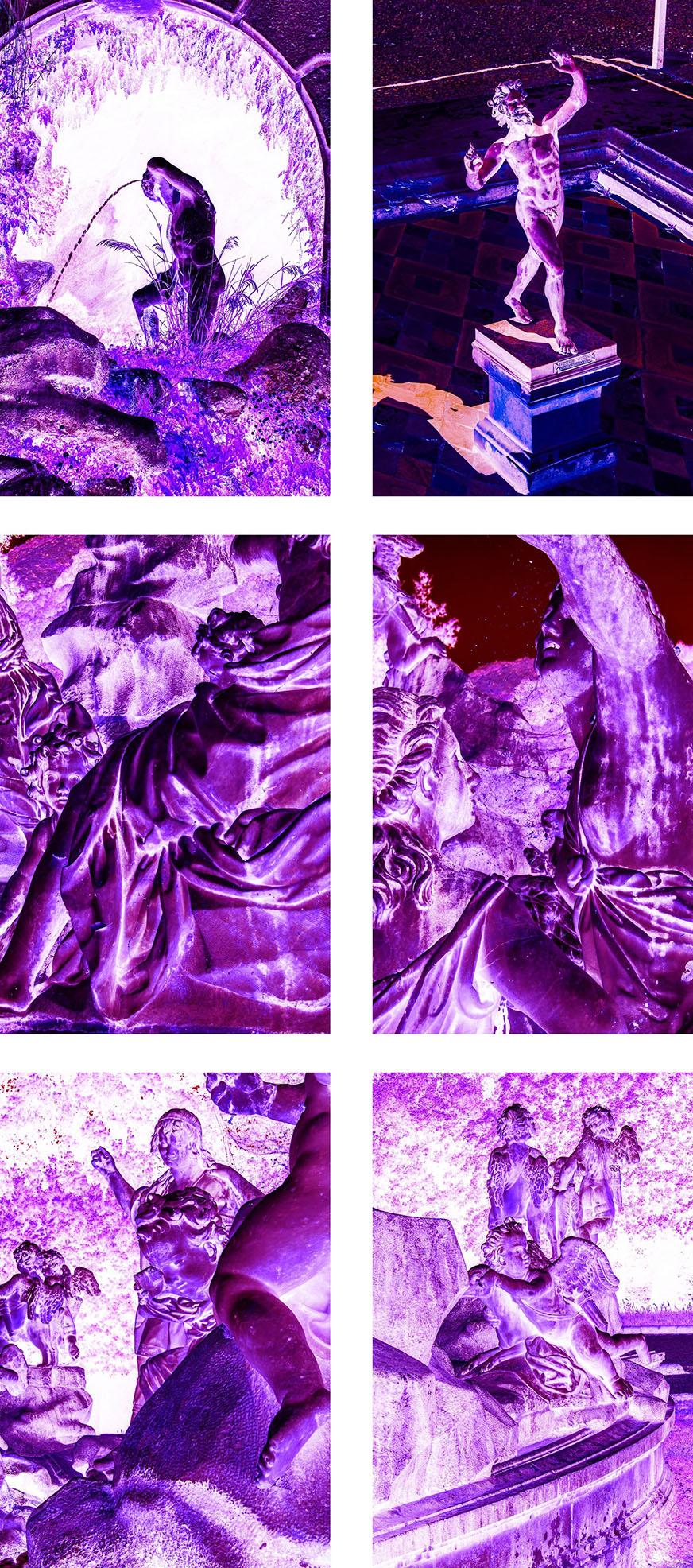 A Purple Velvet 4